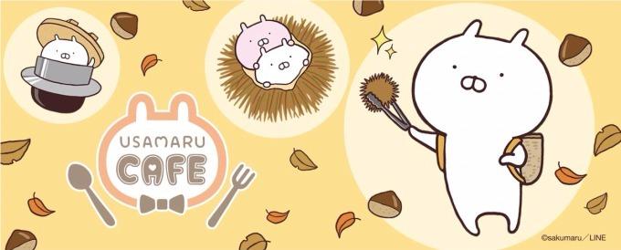 ゆるかわ感が大人気🐰 「うさまるカフェ-秋の収穫祭-」表参道で期間限定オープン🌰🍁