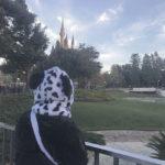 【ディズニーランド】空も綺麗に映せるスポットをご紹介!🐭