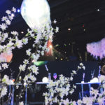 日本一早いお花見が今年も🌸NAKED Inc.が贈る、体験できる不思議な花の世界