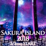 八景島シーパラダイスで楽しむ♬新感覚のお花見イベント🌸SAKURA ISLAND 2018🌸開催😘🙌