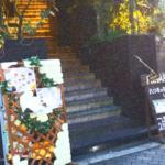 ハンモックに揺られ😪☀︎ 優雅なひとときを過ごしませんか☕️in大阪