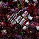 限定コラボコスメ『Erdem for NARS Strange Flowers Collection』😌💐♬