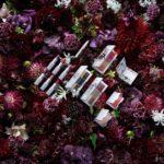 限定コラボコスメ『Erdem for NARS Strange Flowers Collection』😌💐♬