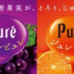 秋の濃密な味わい とろ〜りジュレが30%UPした新ジュレピュレが発売✨