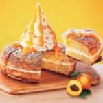 クリームチーズがコーヒー・紅茶に合う☕️💕コメダ珈琲のシロノワール「チーズタルト」期間限定発売🧀