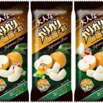 さらに美味しく本格的な味わいに🍏「大人なガリガリ君和梨」6月11日(火)発売!