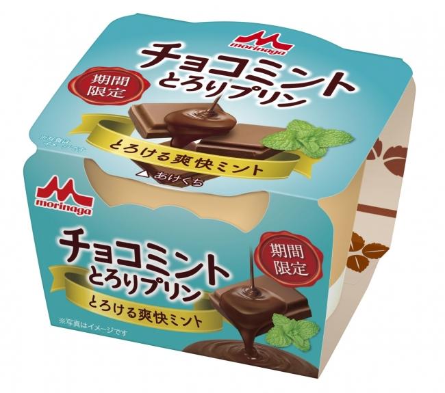 チョコミン党要チェック✅「チョコミント とろりプリン」7月9日(火)新発売🍮