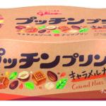 秋にぴったり🧡プッチンプリン初のナッツプリン <キャラメルナッツ>誕生🍮👑
