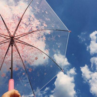【限定品✨】大人気シートマスク「サボリーノ」から春にぴったりの桜の香り🌸が出た~~‼︎‼︎【サボリーノ】
