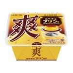 ノスタルジックなプリンの味わいが楽しめる✨『爽 純喫茶風プリン味』4月13日(月)発売🍮💕
