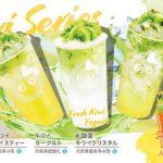 キウイの果肉たっぷり🥝💚「CoCo都可」キウイシリーズが期間限定発売✴️