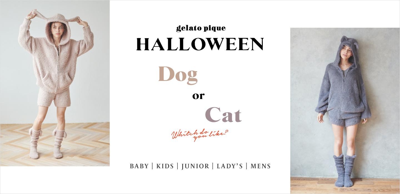 あなたは犬派🐶?猫派🐱?ルームウェアのハロウィンコレクションが10月2日(金)より発売💕
