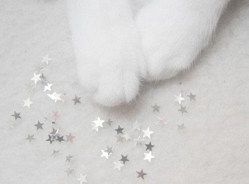 【雑誌付録】マシュマロみたいな🐏ふわもち すみっコぐらし クッション【mini 10月号】【表紙・今田美桜さん】