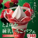 「とよのか練乳いちごパフェ」「たっぷりいちごパフェ」12月11日発売🍓💖