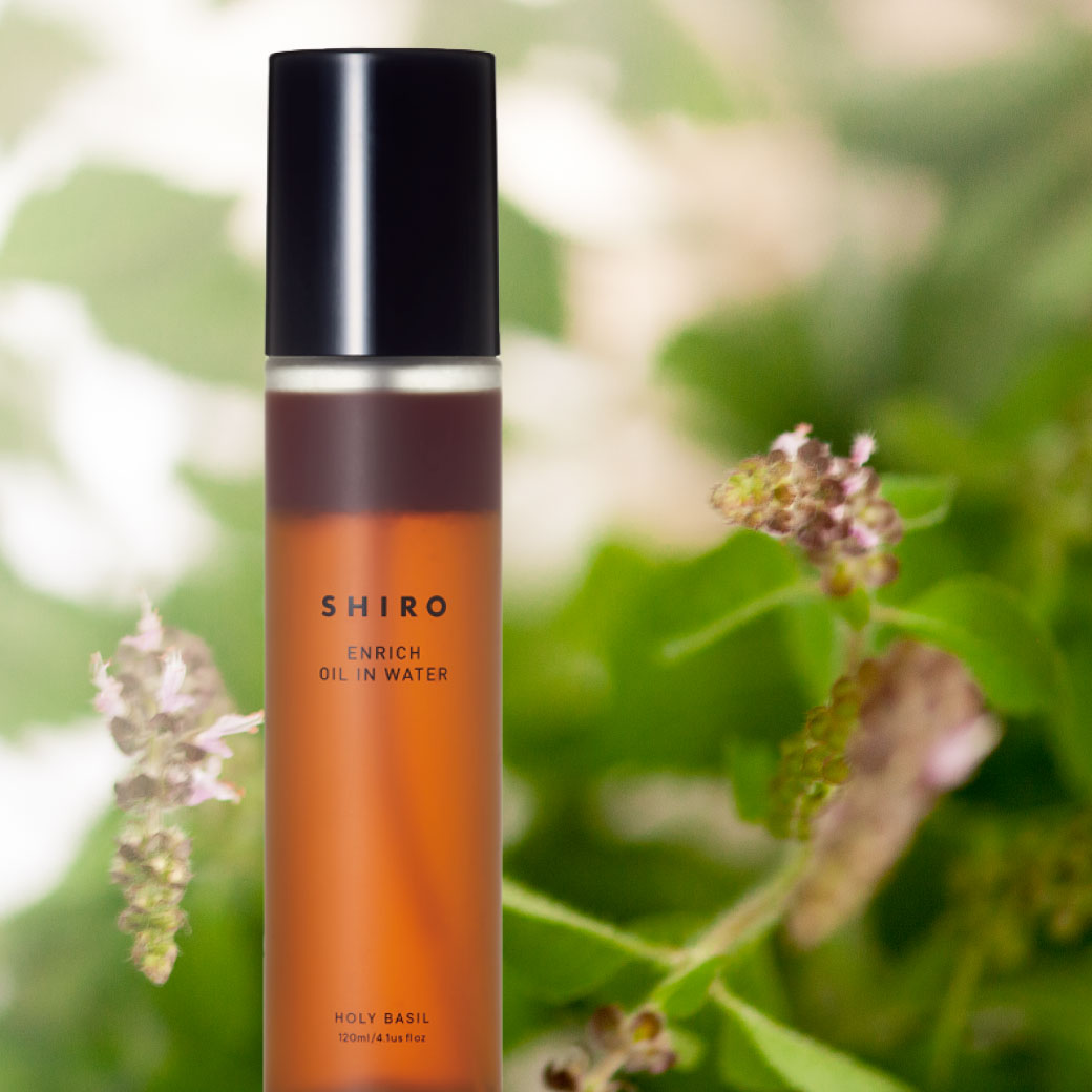 【SHIRO】甘く芳醇に香り立つ、旬の「ホーリーバジル」を使用したオイルインウォーターが数量限定で登場🌿✨