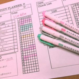 勉強が好きになる?!💕韓国で流行りのスタディープランナー📖🖋